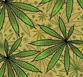 10800828-wallpaper-with-green-leavs-of-cannabis