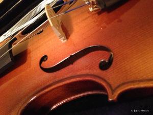 fiddle-signature